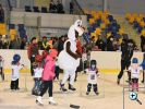 Fotogalerie z akce Týden hokeje na zimním stadionu v Kopřivnici